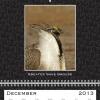 12-december 2013