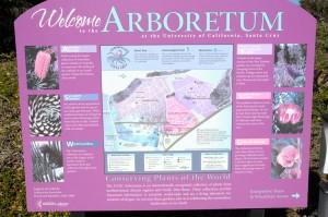 UCSC Arboretum - Santa Cruz, CA